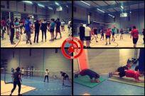 Badminton - Volley